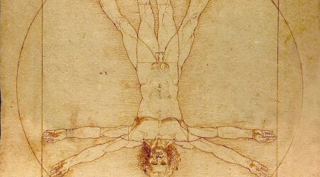 vitruvian man upside down